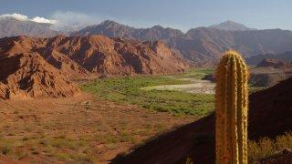 déserts du grand nord-ouest argentin