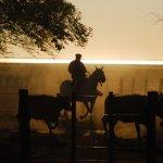 paysages du campo argentin