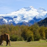 mont tronador en patagonie argentine