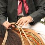 gaucho à cheval, démonstration de dressage