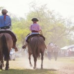 cheval patagonie - voyage argentine - terra argentina