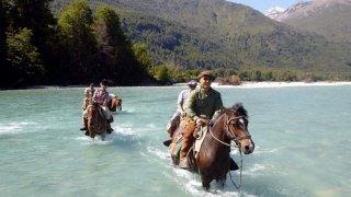 bandurrias - voyage patagonie - terra argentina