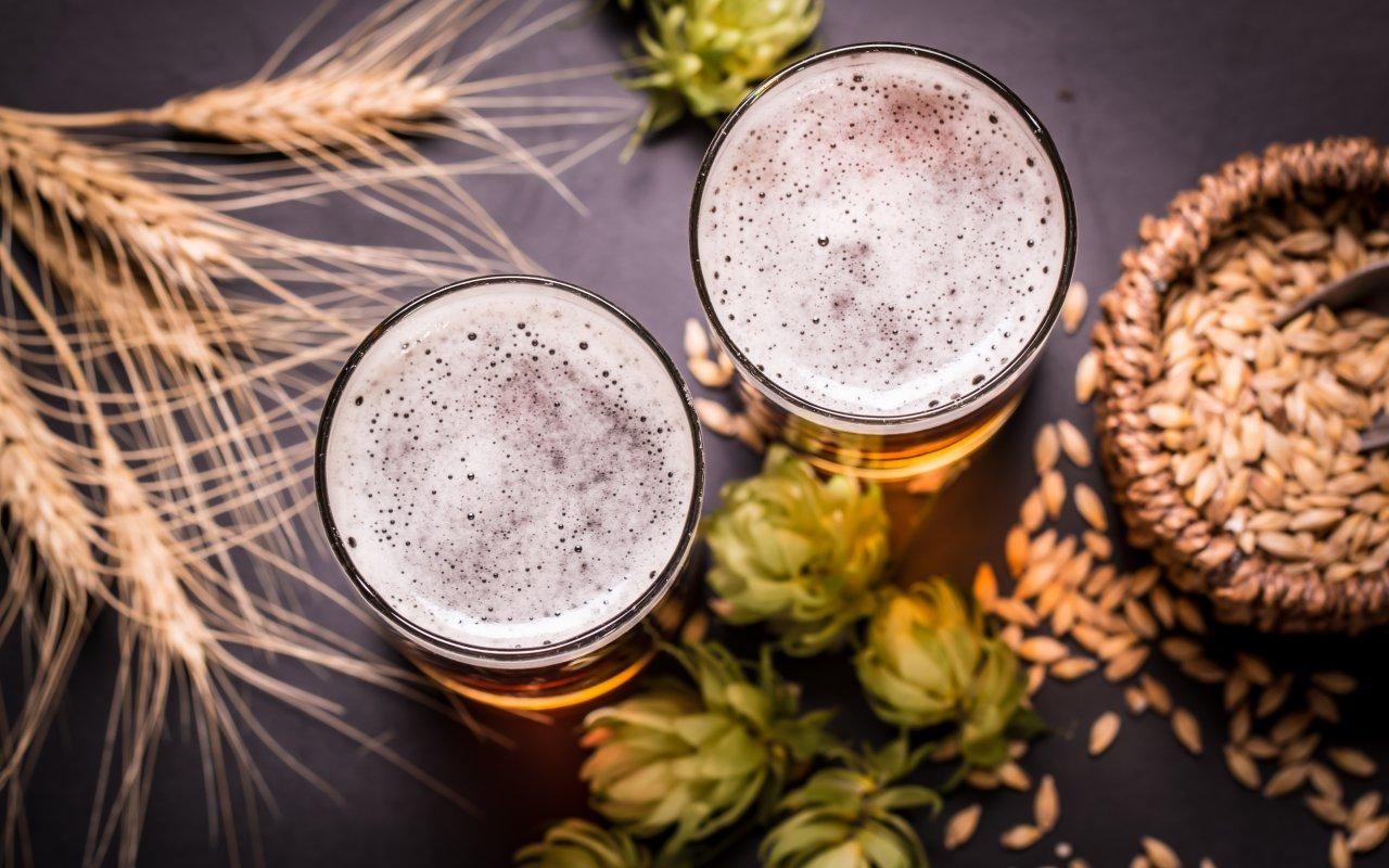bière artisanale bariloche - terra argentina