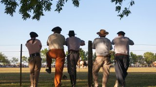 Voyage Buenos Aires, découverte de la culture des Gauchos