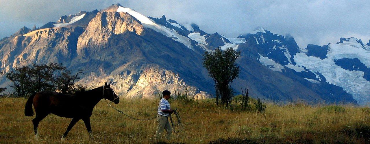 cheval patagonie - terra argentina