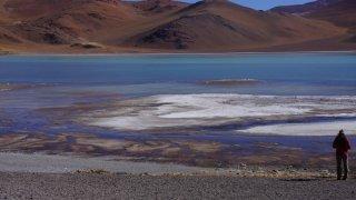 découverte la puna dans le nord-ouest argentin