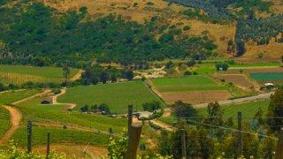 route des vins argentins et chiliens
