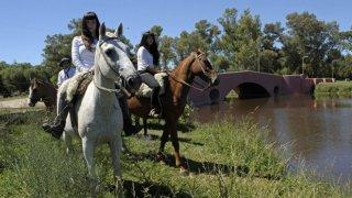 cheval en argentine