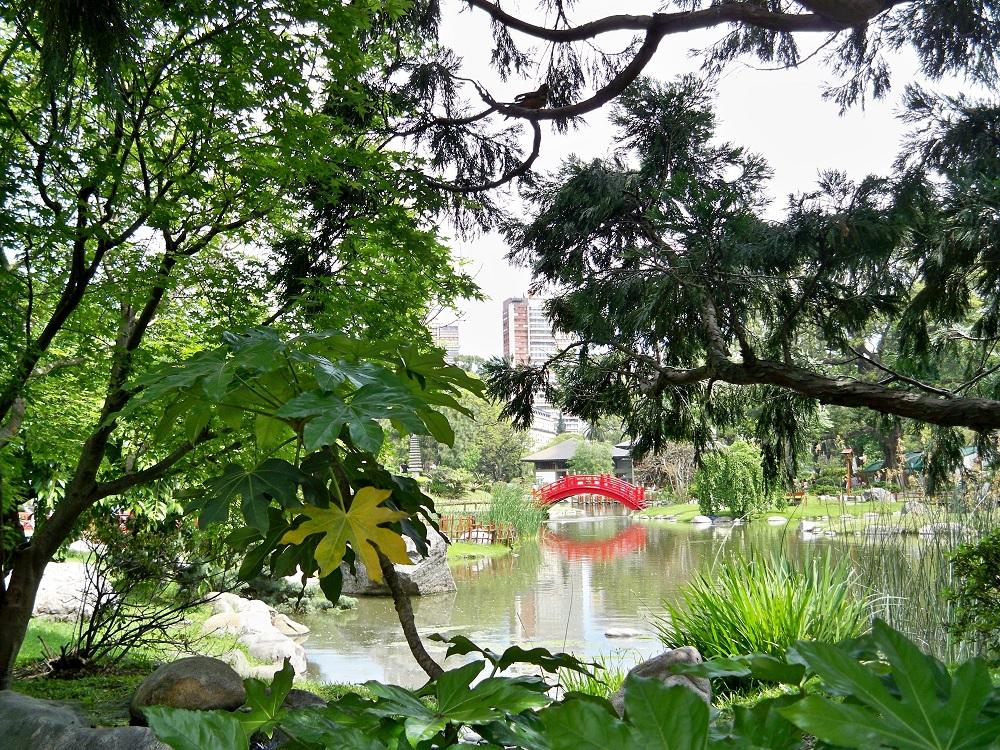 jardin japonais - palermo buenos aires