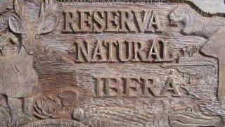 reserve naturelle ibera - argentine