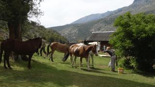 sapucai - voyage patagonie