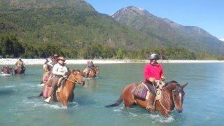 sapucai cheval patagonie